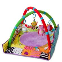 The Taf Toys Newborn Gym Play Mat entertains and develops your baby's senses and motor skills through two fun stages. The extra padded play mat features foldable side panels and colorful illustrations that are visually appealing to your little one. Baby Activity Toys, Infant Activities, Baby Nursery Furniture, Nursery Room Decor, Toys In The Attic, Toys Uk, Play Gym, Developmental Toys, Baby Registry