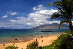 Kamaole II. My favorite beach in Maui. Already counting the months til we can return.