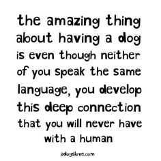 The amazing thing....