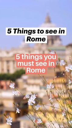 Italy Vacation, Italy Travel, Must See In Rome, Italy Destinations, Visit Italy, Ancient Rome, Virtual Tour, Places To Visit, Tours