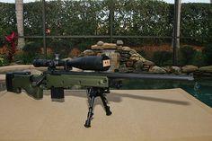 Precisión fotos internacionales - de francotirador oculta los foros