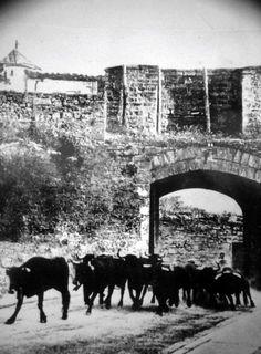 #Pamplona #Navarra Fotos antiguas del encierro #SanFermín #Sanfermines