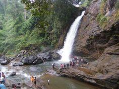Soochipara Falls ,Vellarimala, Kerala ,India - Cruze