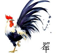 Chinese Astrology: Year of the Yin Fire Rooster 2017 - Forever Conscious Watercolor Bird, Watercolor Animals, Watercolor Paintings, Watercolor Illustration, Chicken Painting, Chicken Art, Chinese Painting, Chinese Art, Chinese Brush
