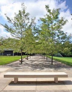 By Dan Kiley, Eero Saarinen's Miller House, Columbus, Indiana, 1957 Modern Landscaping, Garden Landscaping, Landscaping Ideas, Miller House, Plant Design, Garden Design, Landscape Architecture, Landscape Design, Public Space Design