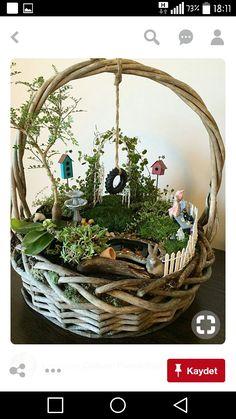 37 beautiful gnome garden and fairy garden design ideas 15 Indoor Fairy Gardens, Mini Fairy Garden, Fairy Garden Houses, Miniature Fairy Gardens, Fairy Gardening, Miniature Fairies, Fairies Garden, Gardening Quotes, Flower Gardening