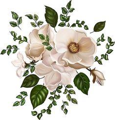 ThatsAll200 Shop   Redbubble Botanical Flowers, Flowers Nature, Flower Art Images, Leaf Border, Border Design, Textile Patterns, Decoupage, Colours, Drawings