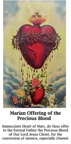 Immaculate Heart of Mary, do thou offer to the Eternal Father the Precious Blood of Our Lord Jesus Christ, for the conversion of sinners, especially ...(name you intention).
