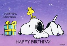 Surprise, Surprise - Happy Birthday - Woodstock Sitting On Snoopy's Head While Looking At Birthday Present