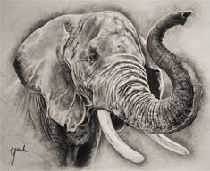 Elephant sketch more elephant head drawing, elephant drawings, elephant ske Elephant Head Drawing, Elephant Sketch, Elephant Love, Elephant Art, Elephant Drawings, Elephant Watercolor, Elephant Gifts, Watercolor Painting, Animal Sketches