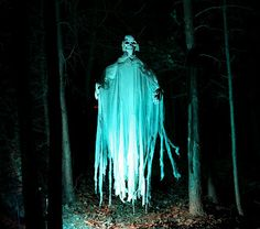 Grim Hollow Haunt: The Haunted Trail (2011)  ~~Make Money At Home~~ Get Paid Daily! $200 a day to post ads. Ask me how... workwithjoni247@gmail.com