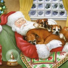 Four adorable designs; The Westie Christmas Cards feature four unique and adorable Westie designs to choos. Boxer And Baby, Boxer Love, Baby Dogs, Christmas Animals, Christmas Cats, Merry Christmas, Christmas Scenes, Father Christmas, Christmas Time