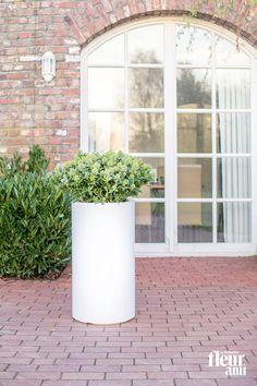PREMIUM CLASSIC planter by fleur ami ▪ Pflanzenkübel von fleur ami Planter Pots, Outdoor, Classic, Green, Design, Lifestyle, Collection, Flowers, Door Entry