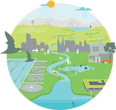Water is always cycling around, through and above the Earth. Learn how the urban and natural water cycles interact to provide cities with safe water, sewerage and drainage. Water Cycle Craft, Water Cycle Project, Water Cycle Activities, Science Activities, Water Cycle Poster, Water Cycle Model, Water Cycle Diagram, Science Penguin, Cycling Art