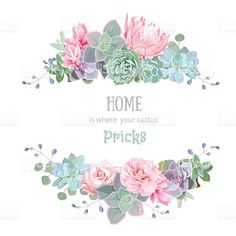 Find Green Colorful Succulents Vector Design Round stock images in HD and millions of other royalty-free stock photos, illustrations and vectors in the Shutterstock collection. Birthday Greetings Quotes, Happy Birthday Messages, Happy Birthday Quotes, Happy Birthday Images, Birthday Pictures, Happy Birthday Floral, It's Your Birthday, Bday Cards, Happy B Day