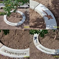 """How To Make Concrete Tree Rings This would be great to """"label' orchard trees, also, probably use flexible edging and pour/stamp while in place?"""