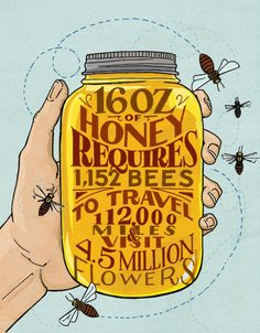 That's a lot of big numbers to make a single jar of honey.