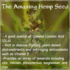 This doesn't even come close to covering the uses of hemp.
