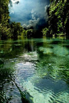 Weekie Wachee River in Florida (Creidt: Weekie Sky Photograph - Weekie Sky Fine Art Print - AR Annahita)