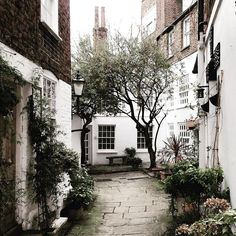 Can you imagine if we got snow ., I mean proper snow how beautiful would look - for now I will make do with delicious winter edits 💕💕🌿 Exterior Design, Interior And Exterior, The Places Youll Go, Places To Go, Life Is Beautiful, Beautiful Places, Beautiful Homes, Hampstead Village, Tumblr