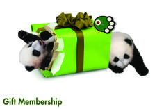 No one re-gifts the Zoo Atlanta Gift Membership! Click the pin to learn more, and order by December 16 to ensure holiday delivery. #ZAGift