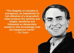 The Illegality of Cannabis is Outrageous – Carl Sagan Medical Marijuana, Cannabis, Atheist Beliefs, White House Plans, Carl Sagan, 7 Habits, Funny Cards, Quotes To Live By, Ganja