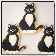 https://www.facebook.com/angela.luisirudy ★ More on #cats - Get Ozzi Cat Magazine here >> http://OzziCat.com.au ★