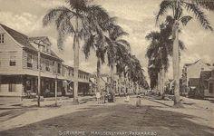 Suriname.....Maagdenstraat