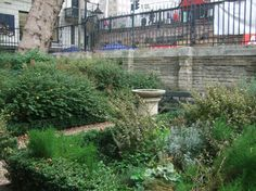 A bad witch's blog: Green London: Southwark Cathedral Herb Garden