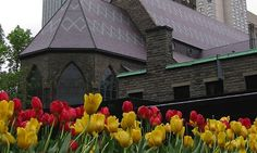 Spring in Montreal – Top 10 Don't Miss Experiences for Families ...