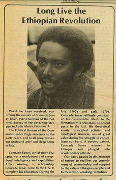 amhara tribe facts