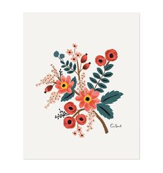 Rifle Paper Company https://riflepaperco.com/shop/art-prints/coral-botanical-illustrated-art-print/