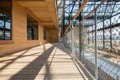 Dame de fer et de bois, la halle Pajol a été réhabilitée par Jourda Architectes en 2008. Quels sont ses petits secrets architecturaux ? On vous dit tout...   #architecte #architecture #bibliotheque #bois #friche #halle #industrielle #jourda #magazine #pajon #paris #rehabilitation #sncf