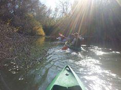 Ven y practica el piragüismo guiado en el Paisaje Protegido del Guadiamar.   El Guadiamar, un río rebosante de vida, hablar del Corredor Verde es hablar del río de príncipes, como lo llamaron los árabes: Wadi-Amar.