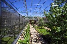 Papouščí zologická zahrada