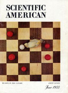 Scientific American, June 1955 Cover Scientific American, June, Cover