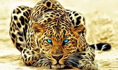 Purchase Leopard Art Animal Shower Curtain Waterproof Polyester Fabric Shower Curtain Size inches from Andrea Marcias on OpenSky. Poster Mural, Art Mural, Stars Wallpaper, 1080p Wallpaper, Top Imagem, Gem Crafts, Whatsapp Wallpaper, Wallpaper Aesthetic, Paint By Number Kits