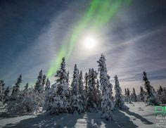 """""""Add a full moon, a moon halo and some auroras to the snowy landscape of Fairbanks, and you get a true winter wonderland,"""" says Murray. """"It was an amazing treat for photographers and even to human eyes."""""""