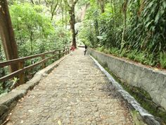 Andadores del Parque Nacional de Uruapan - Este parque, además de agua en…
