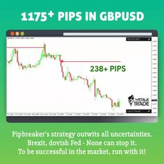 Forex indicator that actually works - - Having Pipbreaker at your side ensures regular profits as it works on a unique logic and withstands all market fluctuations. Have any questions? Ask our Live chat agent now: Online Stock Trading, Online Share Trading, Stock Trading Strategies, Forex Trading Tips, Learn Forex Trading, Forex Trading Signals, Trading Quotes, Intraday Trading, Cryptocurrency Trading
