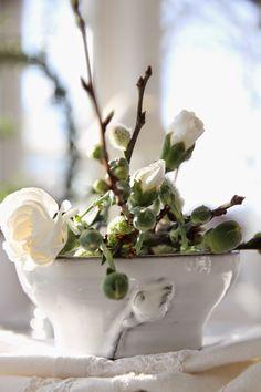 Vårligt................-