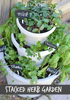 DIY Stacked Herb Garden. An easy way to keep fresh herbs for recipes at home to add flavor and fun to cooking.