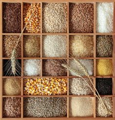 Somehow use similar presentation of assorted grains for display Love it! A Guide to Cooking with Whole Grains and Baking with Whole Grain Flours from The Kitchn Whole Grain Foods, Whole Grain Cereals, Whole Grain Bread, Whole Grain Rice, Quinoa, Kamut, Great Grains, Healthy Grains, Flour Recipes