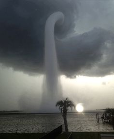 Amazing water spout!!  Picture taken by Joey Mole- in Safety Harbor, Florida.
