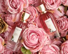 ROSE POMPON | GOUTAL PARIS As you stroll down Rue des Rosiers in Paris, you can feel the vibrant, sparkling atmosphere along the cobblestone street, punctuated with the laughter from café terraces and snippets of shopkeepers' conversations. In the spring, the climbing rose bushes flower in clusters.  #madisonperfumery #goutalparis