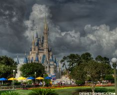 The top 10 things to do at Disney on a rainy day. (Just in case! Disney World Restaurants, Walt Disney World Vacations, Disney Trips, Disney Parks, Disneyland Trip, Disney Fun, Disney Magic, Disney 2015, Disney Stuff