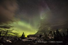 Miss Piggy under the northern lights in Churchill, Manitoba. 500px / Photo by Simon Gee
