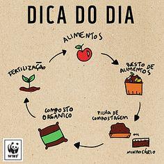WWF Brasil - Passo-a-passo para elaborar sua composteira