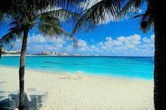 Palmeras de Cancún