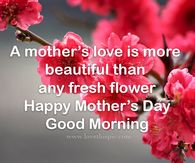 In loving memory of my beautiful mom on Mother's Day Happy Mothers Day Friend, Mothers Day Roses, Happy Mothers Day Pictures, Mothers Day Gif, Happy Mother Day Quotes, Mother Pictures, Mother Day Wishes, Children Pictures, Today Pictures